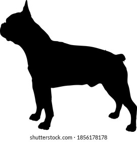 Boston Terrier Dog Silhouette Vector File