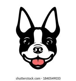 Boston terrier dog vector illustration