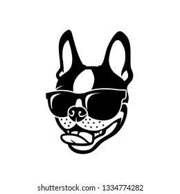 Boston terrier dog wearing sunglasses - vector illustration