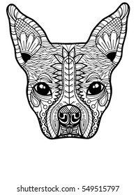 Boston Terrier or French Bulldog Adult Coloring Page