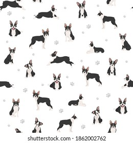 Boston terrier seamless pattern. Dog healthy silhouette and yoga poses background.  Vector illustration
