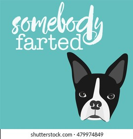 """Boston Terrier with text, """"Somebody Farted"""" for the Gassy Dog Lover."""