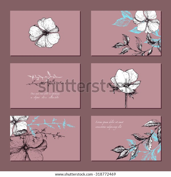Botanical Floral Banner Collection Organic Shop Stock Image
