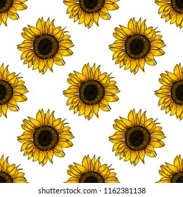 Botanical floral seamless pattern, wild meadow sunflower, isolated on white background, for book, cover, banner, textile, wrapping. Hand painted flowers. Vector, eps 10
