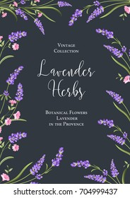 Botanical flowers poster. The calligraphic sign - Lavender Herbs over blue background with lavender, sakura and rose flowers. Summer flowers. Floral card on the dark background. Vector illustration.