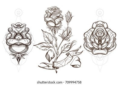 Botanical graphics. Roses. A set of illustrations with buds, blossoming flowers and leaves.