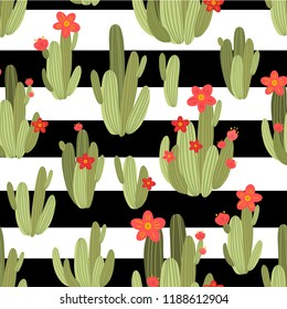 botanical illustration with Peruvian cactus. Vector seamless pattern on black and white striped background. Summer plants.