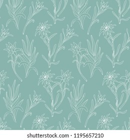 Botanical pattern with edelweiss flowers