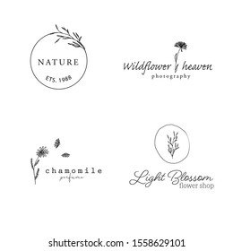 Botanical Simple Hand Drawn Logo with Wild Flower and Leaves. Minimalist Floral Logo for spa and beauty salon, boutique, organic shop, wedding , floral designer, photography, cosmetic, hand made.