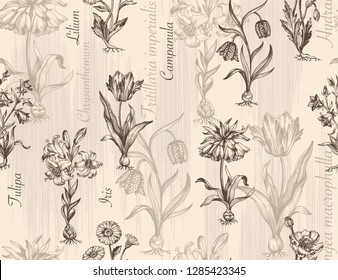 Botanical victorian seamless pattern for wrapping paper, textile and wallpaper. Engraved vintage style. Vector illustration.