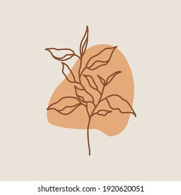 Botanical wall art vector. foliage line art drawing with abstract shape. Abstract Plant Art design for print, cover, wallpaper, Minimal and natural wall art. Vector illustration.