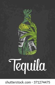 Bottle of tequila with glass, cactus, salt and lime. Engraving vintage vector white and green illustration. Isolated on black background. Hand drawn design element for label and poster