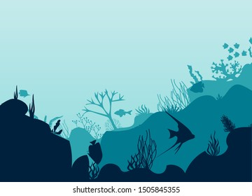 The bottom of the ocean, swimming fish, corals in the ocean.