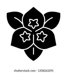 Bougainvillea flower glyph icon. Ornamental garden plant. Silhouette symbol. Negative space. Vector isolated illustration