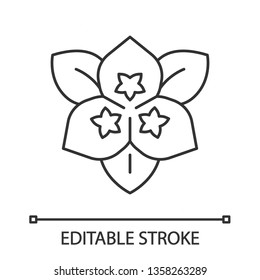 Bougainvillea flower linear icon. Ornamental garden plant. Thin line illustration. Contour symbol. Vector isolated outline drawing. Editable stroke