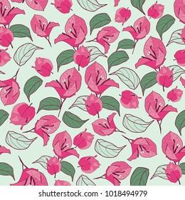 Bougainvillea flower pattern on green background