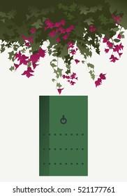 Bougainvillea flowers and green door in traditional mediterranean house