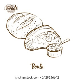 Boule bread vector drawing. Food sketch of Yeast bread, usually known in France. Bakery illustration series.