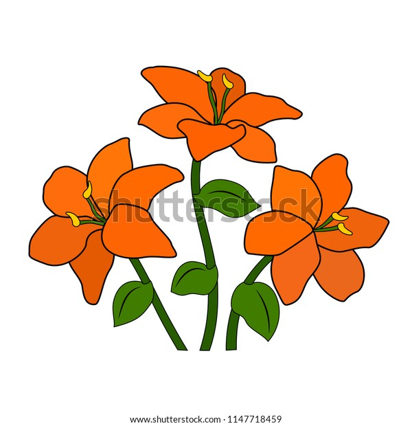 A bouquet or a bed of orange flowers, six petals, a green leaf and stem, a white background, an isolated object, a simple stylized drawing