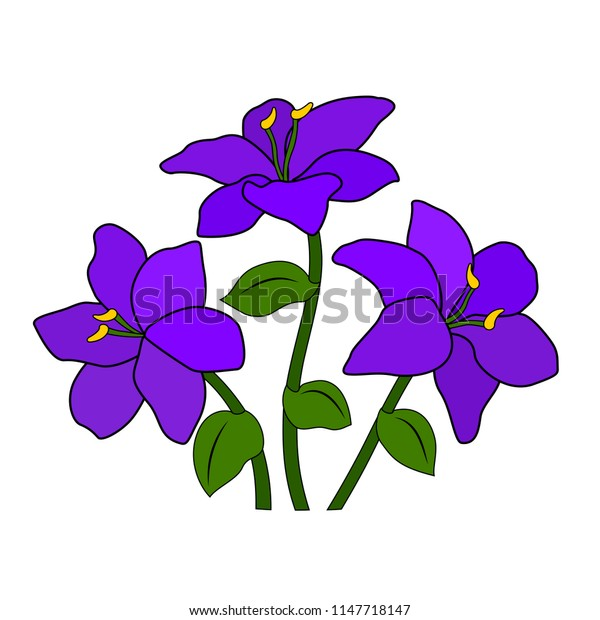 A bouquet or a bed of purple lilac violet flowers, six petals, a green leaf and stem, a white background, an isolated object, a simple stylized drawing