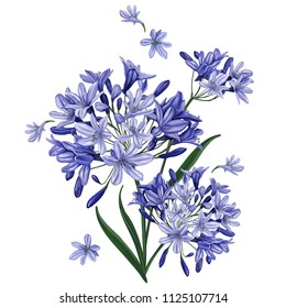 A bouquet of blue flowers on a white background. Isolated drawing.
