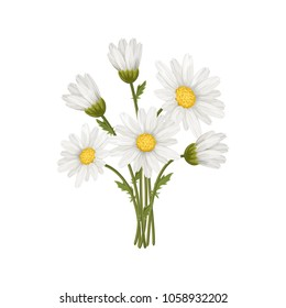 Bouquet of chamomiles isolated on a white background. Vector illustration.