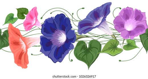 bouquet climbing wavy bells, convolvulus, flowers blue, pink, purple and green leaves drawn in vector seamless, brush Bindweed