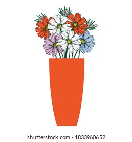 bouquet of cosmea flowers in a vase, drawing vector illustrations and clipart.