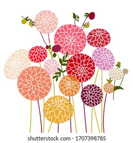 A bouquet of cute dahlias with buds. Bush with beautiful flowers. Vector illustration. Doodle pattern for postcards, wrapping, covers, wallpapers.
