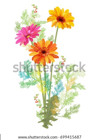 Stock Vektory Na Tema Bouquet Gerbera Daisy Small Green Twigs Bez