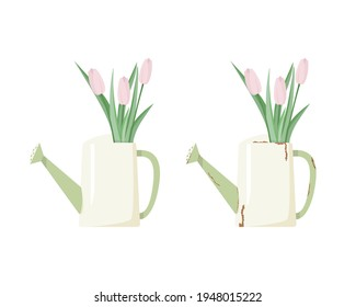A bouquet of pink tulips in a watering can. Set - new and old rusty watering can. Vector illustration.