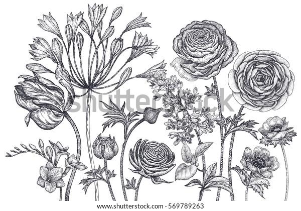 datování květin