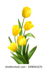 Bouquet of spring yellow tulips isolated on white background. Realistic vector illustration EPS10