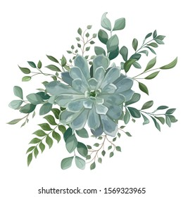 Bouquet with succulent flowers, watercolor, isolated on white. Vector Watercolour.