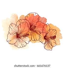 A bouquet of tropical Hibiscus flowers. Hand drawn sketch of hibiscus flowers. Texture background watercolor effect. Vector illustration isolated. A template for the design.