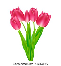 Bouquet of  tulips. Vector illustration.