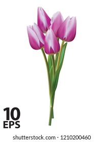 Bouquet of violet tulips on a white. Realistic vector 3d illustration