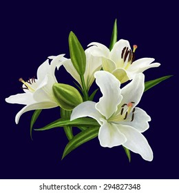 bouquet of white lily flower isolated