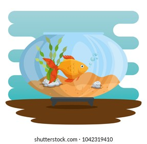 bowl aquarium with fish