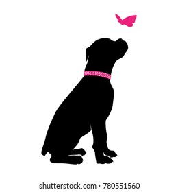 boxer dog and butterfly logo
