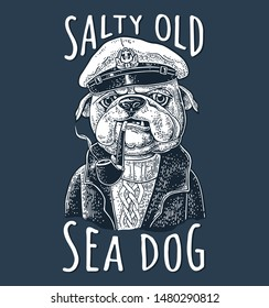 Boxer smoking a pipe and dressed in captain hat, sweater, pea jacket. Vector white engraving vintage illustrations isolated on dark. Sea Dog salty old lettering. For tattoo and t-shirt