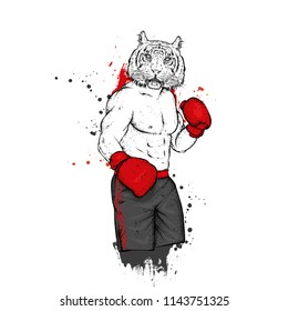A boxer with a tiger's head. Athlete in shorts and boxing gloves. Vector illustration for a postcard or a poster, print for clothes. Boxing. An animal is a hipster.