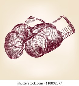 boxing gloves  hand drawn vintage  vector illustration