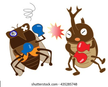 Boxing of the insect