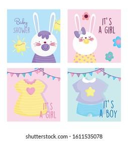boy or girl, gender reveal baby shower cute bunnies cards vector illustration