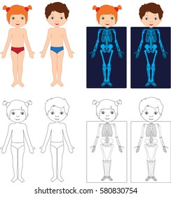 Boy and girl unclothed. Kids bodies by X-ray. Educational coloring book for kids. Body parts, anatomy