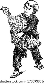 A boy holding a domestic turkey in his hands, domestic turkey is a large ground-dwelling bird that is 36-44 inches in length, vintage line drawing or engraving illustration.