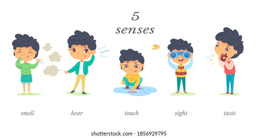 Boy showing five senses set. Sense of sight, touch, hear, smell, taste vector illustration. Small happy child in nature and exploring wonders of spring. Joyful education at childhood.