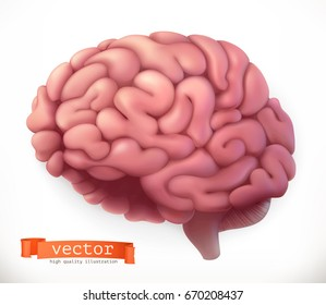 Brain. 3d vector icon.