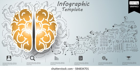 Brain Business Success Modern design Idea and Concept Vector illustration Infographic template with Lined pattern,graph,arrow,icon.